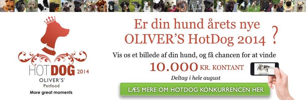 hotdog2014